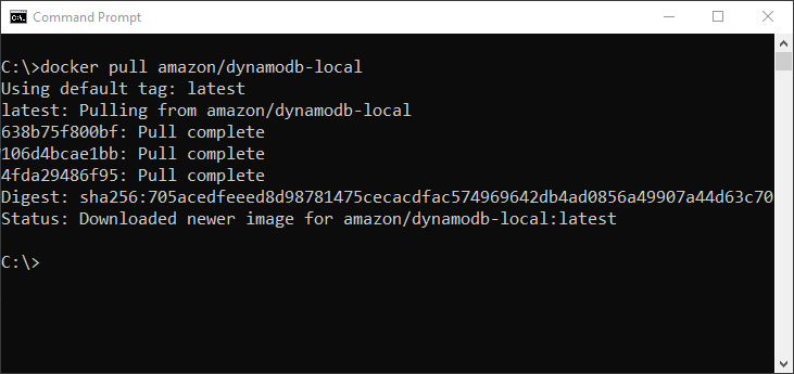 Docker pull the AWS DynamoDB local image