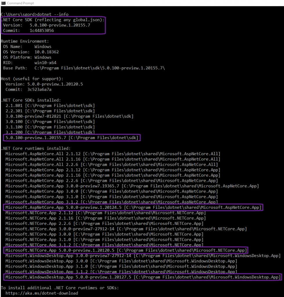 Output of dotnet --info command showing the inclusion of .NET 5 preview 1 SDK and runtimes.